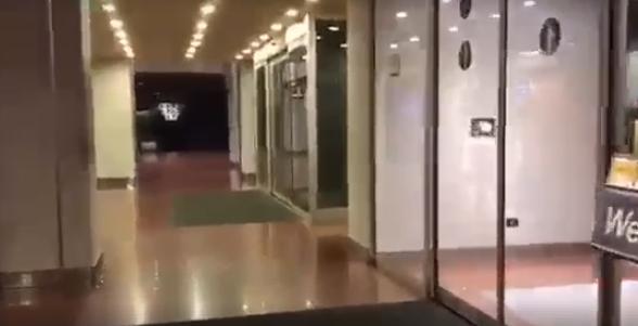 albergo-lupo
